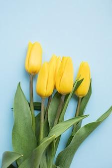 Belles tulipes jaunes sur fond de papier multicolore avec espace de copie. printemps, été, fleurs, concept de couleur, journée de la femme.
