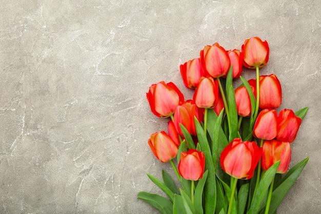 Belles tulipes rouges sur béton gris avec espace copie