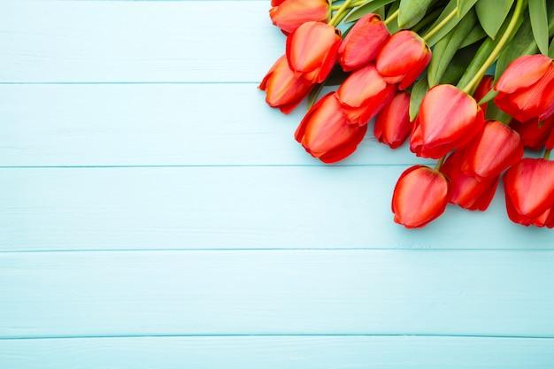 Belles tulipes rouges sur bleu avec espace copie