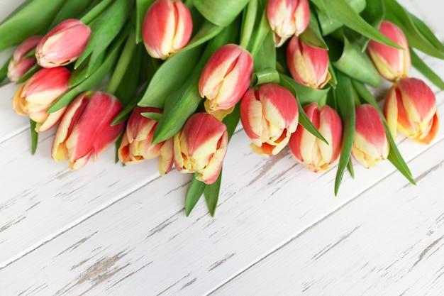 Belles tulipes rouges sur fond de bois blanc