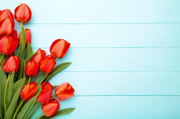 Belles tulipes rouges sur mur bleu avec espace copie