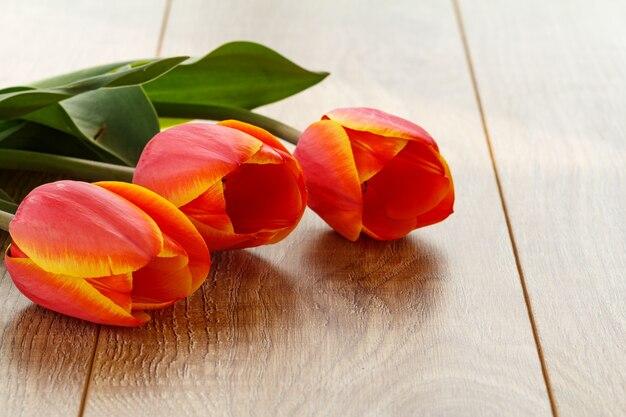 Belles tulipes rouges sur les planches de bois. concept de donner un cadeau en vacances.