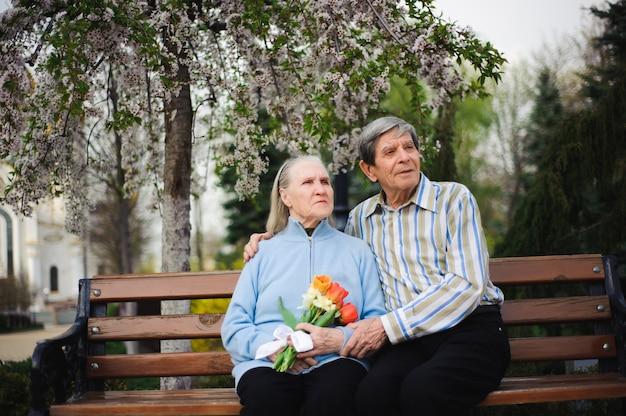 Belles vieilles personnes heureuses assis dans le parc en automne
