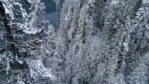 De belles vues sur la nature qui nous entoure