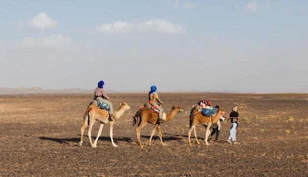Bereber mène des chameaux à travers le désert