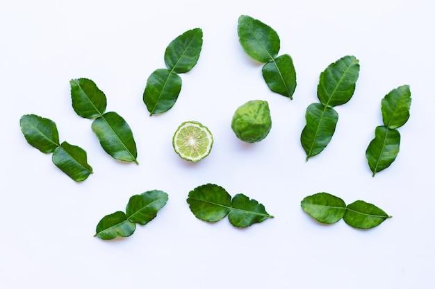 Bergamote, kaffir, citron vert, à, feuilles, herbe, ingrédient frais, isolé, blanc