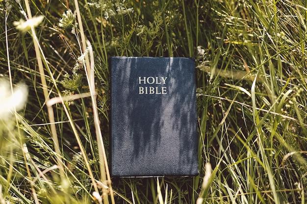 Bible dans l'herbe verte. lire la sainte bible. concept pour la foi, la spiritualité et la religion