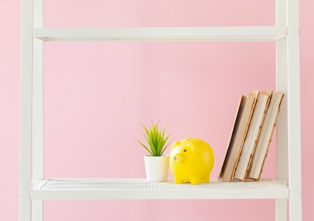 Bibliothèque blanche avec des livres et des plantes contre le mur rose