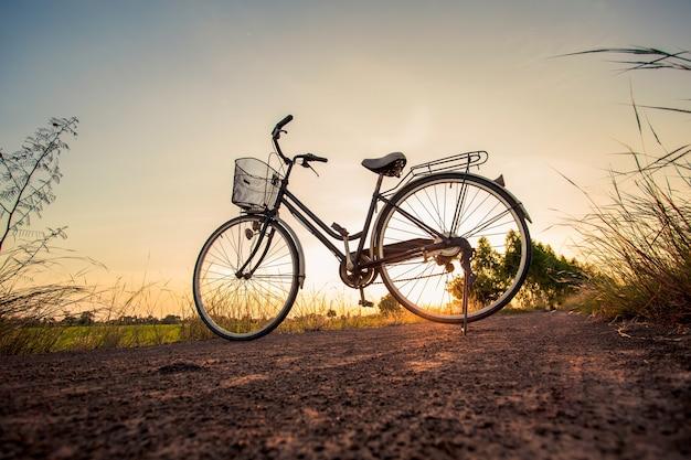 Bicyclettes garées dans le pré