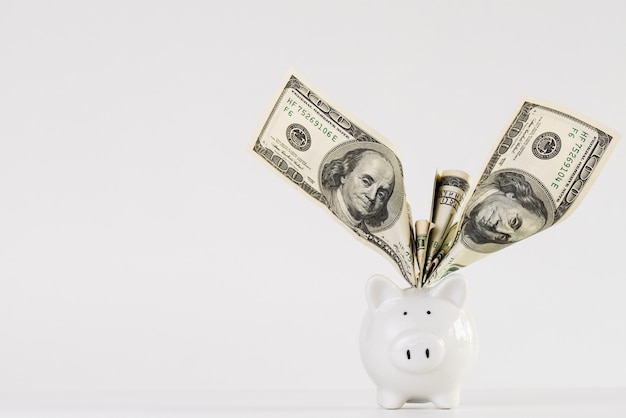 Billets de dollars en amérique argent en tirelire sur fond blanc