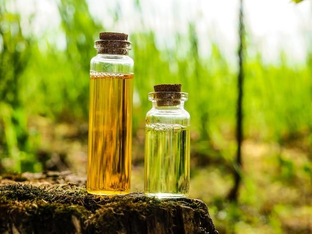 Bio médecine alternative bio, phytothérapie., bouteilles d'huile essentielle saine ou infusion et herbes médicinales sèches.