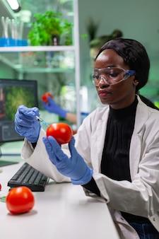 Biochimiste africain avec des gants médicaux injectant de la tomate biologique avec des pesticides