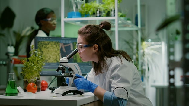 Biologiste prenant l'échantillon de feuille mettant dans le microscope