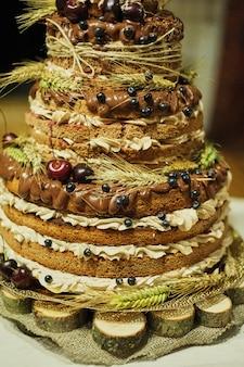 Biscuit aux fruits gâteau de mariage multicolore
