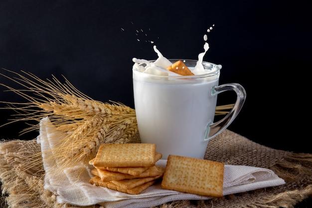Biscuit biscuit carré au lait frais