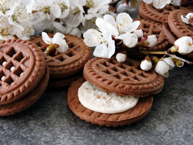Biscuits au chocolat à la crème blanche. fleurs blanches de sakura.