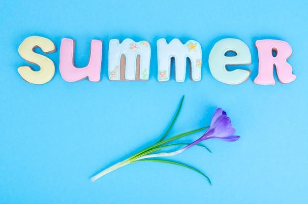Des biscuits faits maison avec le thème de l'été sur fond bleu.