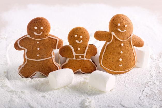 Biscuits de la famille en pain d'épice sur sucre glace