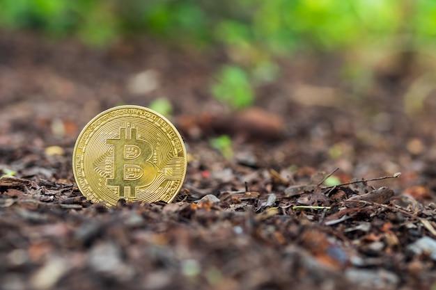 Bitcoin dans le sol. concept d'exploitation de bitcoins d'or