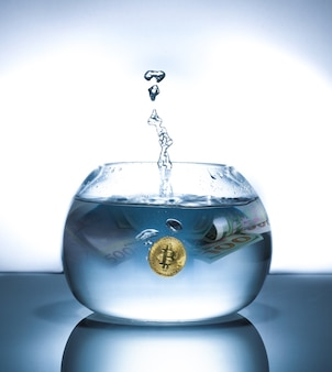 Bitcoin est tombé dans le bocal à poissons