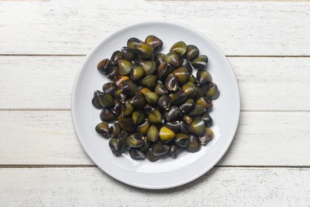 Bivalve d'eau douce de mollusques shijimi, tel que coquilles de palourdes dans une assiette