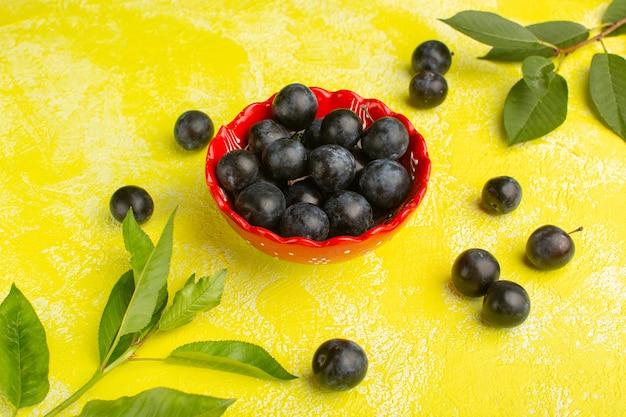 Blackthorns frais à l'intérieur de la plaque sur jaune