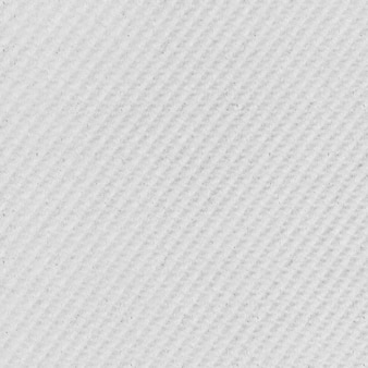 Blanc canvas texture