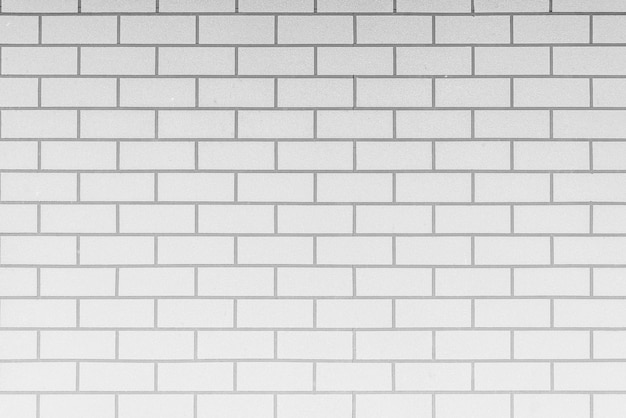Blanc textures murales