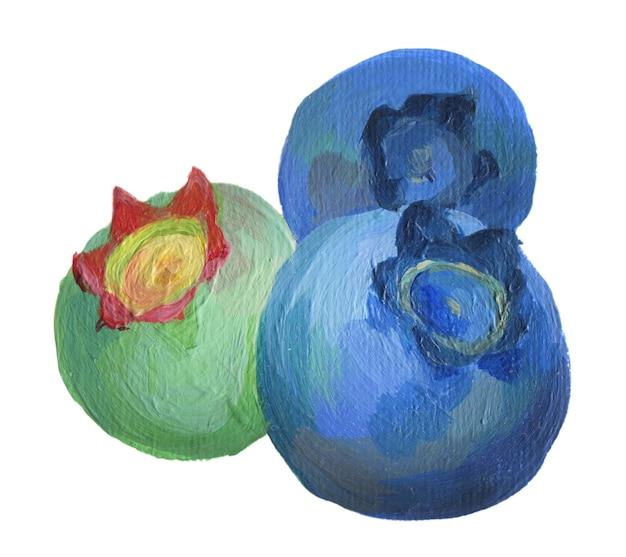 Bleuet bleu et vert isolé sur fond blanc bleuets acryliques dessinés à la main bouchent