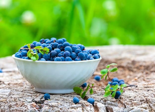 Le bleuet de la ferme biologique cru frais dans une tasse blanche sur le bois