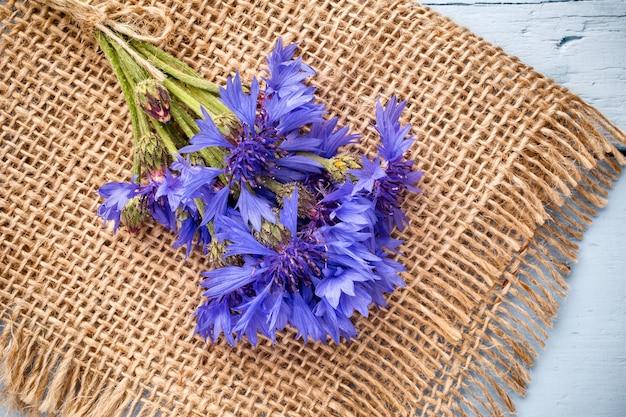 Bleuet sur fond en bois. photographie de studio. fleurs écologiques.