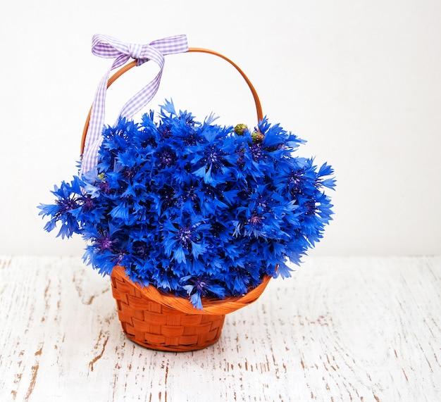 Bleuets bleus