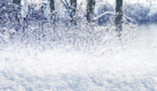 Blizzard dans la forêt avec sol enneigé et arbres flous