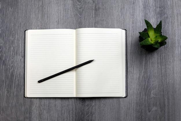 Bloc-notes ouvert avec stylo et cactus en pot sur fond de bois