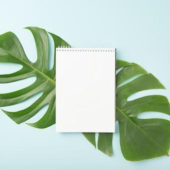 Bloc-notes en spirale sur les feuilles vertes de monstera sur fond bleu