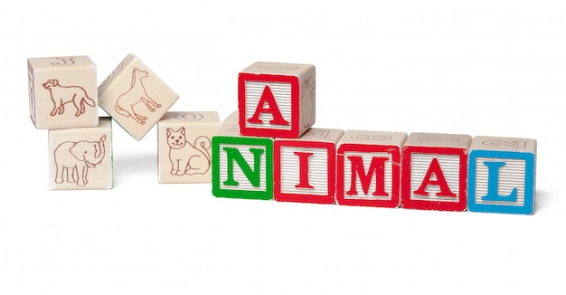 Blocs d'alphabet coloré. animal mot isolé sur blanc