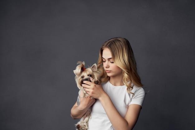 Blonde pedigree chien mode de vie fond isolé