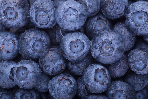 Blueberries vue de dessus