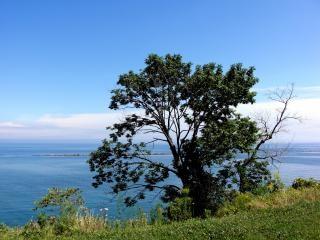 Bluffs milwaukee, de l'eau