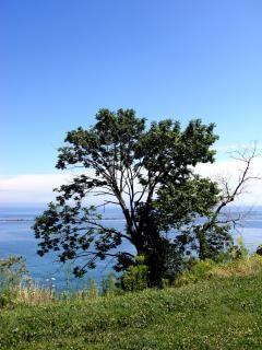 Bluffs milwaukee, lakemichigan, de l'eau