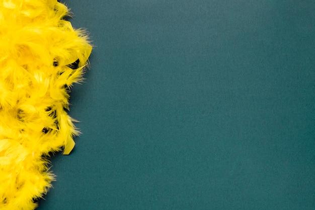Boa de plumes jaunes sur fond bleu avec espace de copie