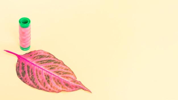 Bobine de fil rose avec une feuille