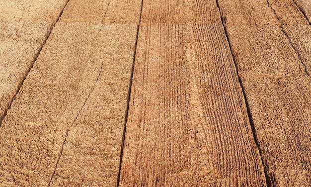 Bois abstrait polygonale de rendu 3d en bois