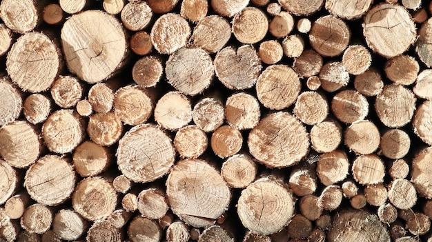 Bois de charpente, papier peint en bois, nature. pile de journaux. un tas de bois de chauffage à proximité. bois de chauffage prêt et une baguette ou des boutures pour une cheminée. forêt pour fond d'hiver et de bois de chauffage.