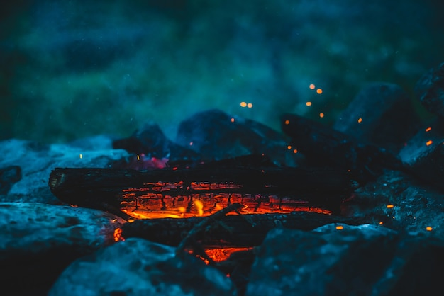 Bois de chauffage brûlé vif brûlé en gros plan de feu