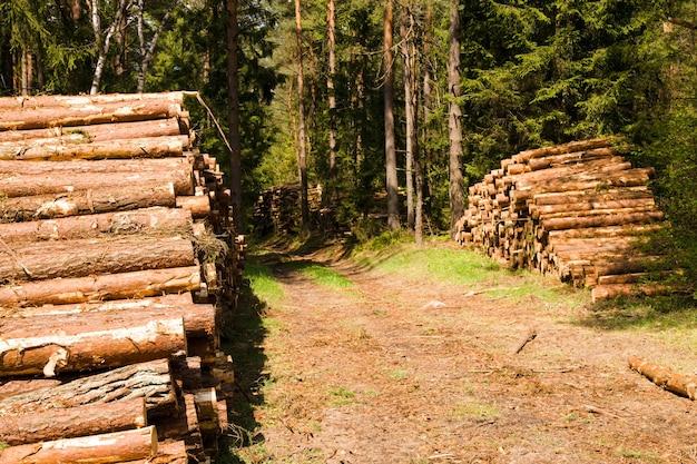 Le bois de chauffage combiné coupé et fendu
