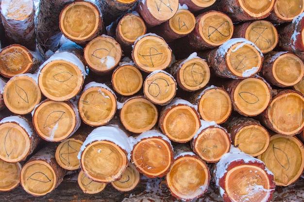 Bois de chauffage empilé dans le bois coupé, bois d'oeuvre, bois de chauffage
