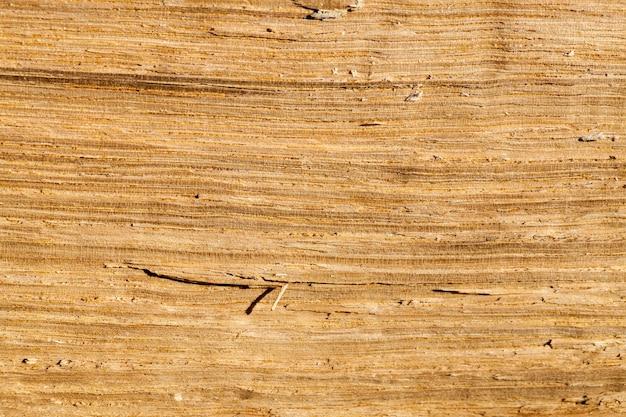 Bois de chauffage, photographié en gros plan. petite profondeur de champ, le bois a une teinte jaune orangée