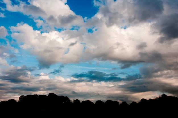 Des bois avec un ciel dramatique