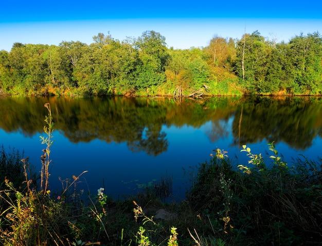 Bois dramatique près de fond de paysage de rivière d'été